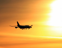 Half of airlines and air freight carriers expect to cut workforces in coming months