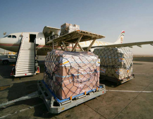 Abu Dhabi Int. Airport cargo grows by over 6,600 tons