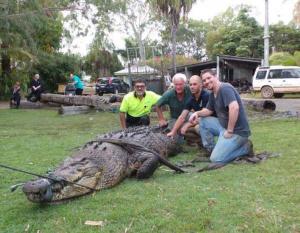 PHOTOS: Crocodiles flown into the UAE from Australia