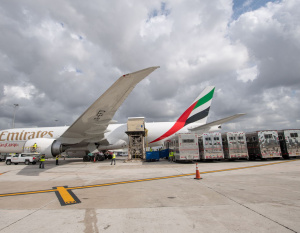 How Emirates flies the world's top race horses to major events