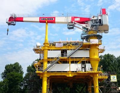 BIG PICTURE: Liebherr Offshore's new ram luffing crane