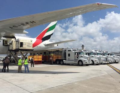 BIG PIC: Emirates flies 100 horses across 3 continents