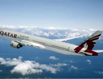 Passenger sues Qatar Airways following spider bite