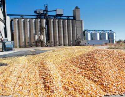Saudi Arabia moves to privatise last of local grain supply chain