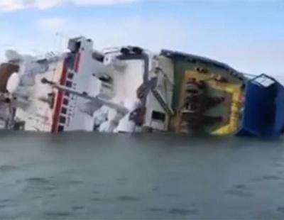 Ship bound for Saudi Arabia with 14,600 sheep aboard capsizes off Romania