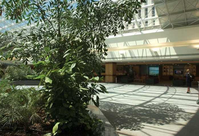 A view of the business lounge at Beirut International Airport.