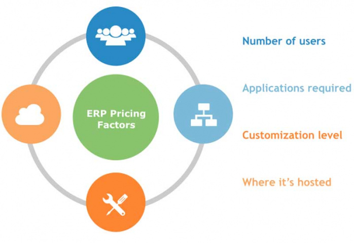 Infographic showing what the main determinants of price include (courtesy of Software Advice).
