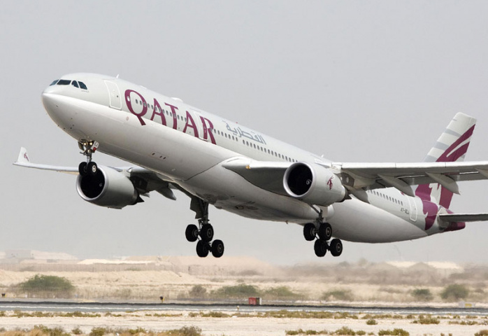 Animals, Qatar, NEWS