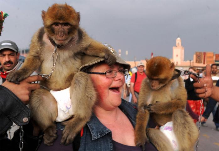 Marrakech is BA's top destination for 2011 (Abdelhak Senna/AFP/Getty Images).