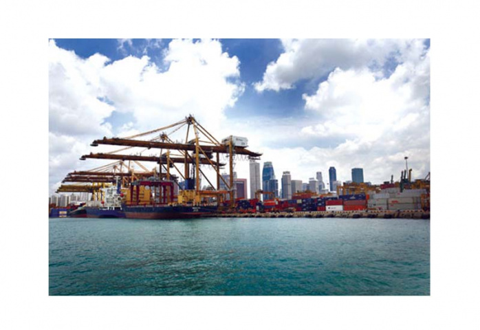 SINGAPORE: Emirates Shipping Line has stamped its presence in the world?s key maritime hubs.