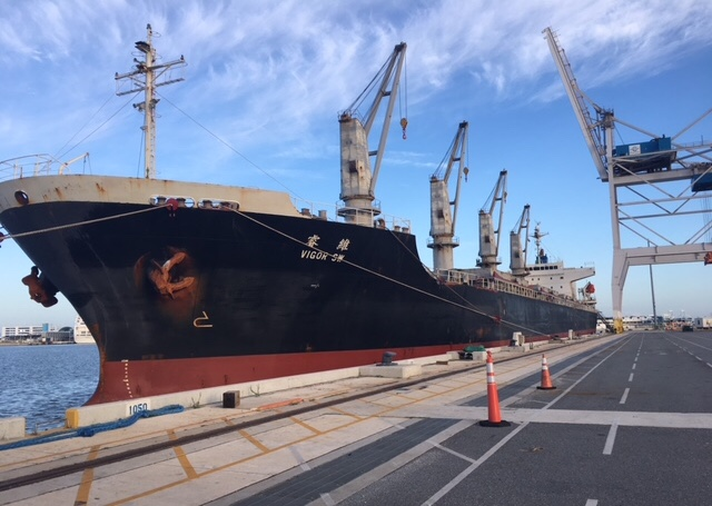 Gt usa, Gulftainer, Port canaveral, Timber