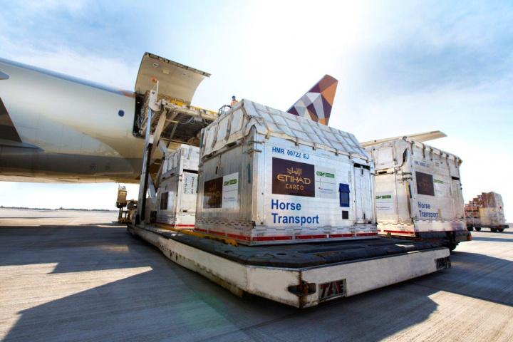 Etihad cargo, Equestrian, Logistics, Air cargo, Longines masters