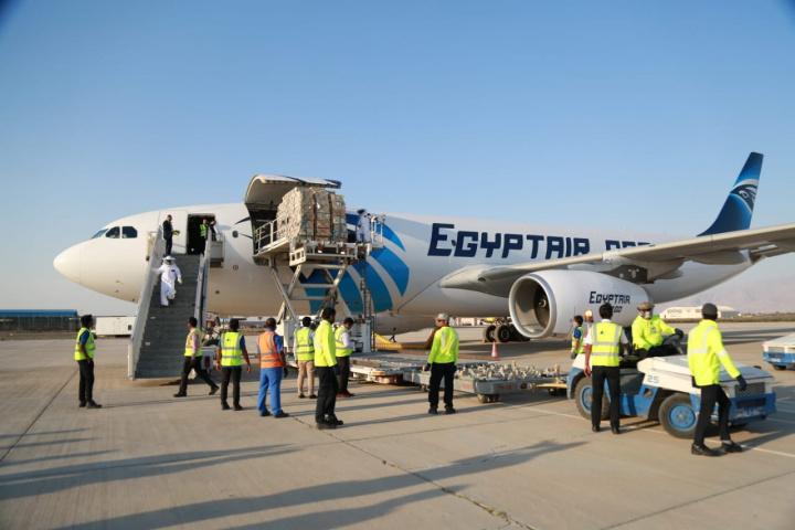 Egypt air cargo, Honeybees, Ras al khaimah airport