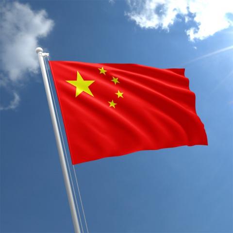 China, Uae, Trade, State visit