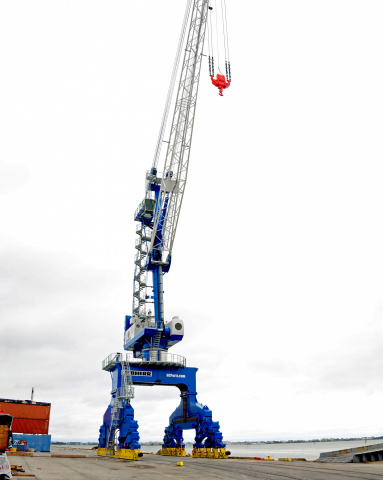 First Liebherr portal slewing crane in the US.